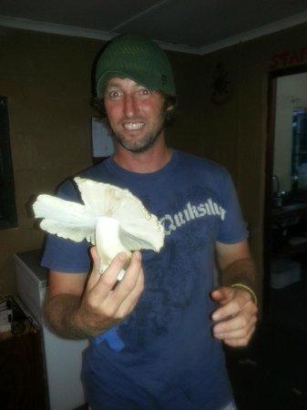 Locally harvested mushroom!