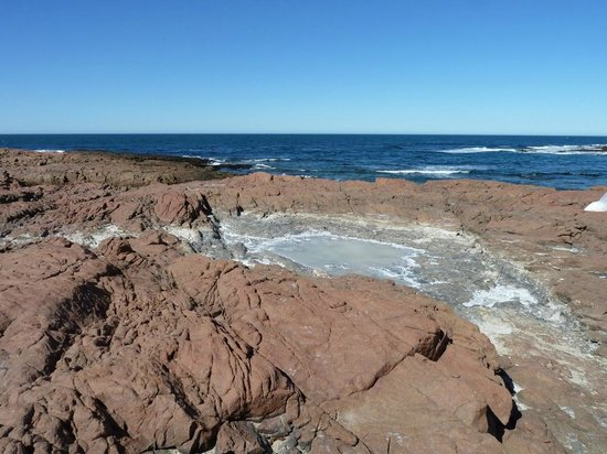 Camarones, Argentina: Salines naturelles dans lesquelles nous ramassons le sel