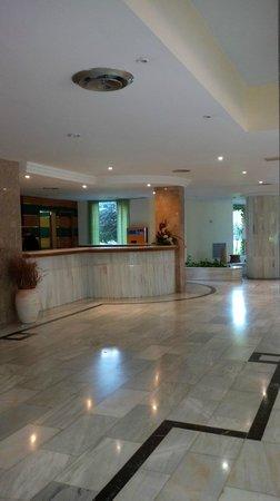 OLA Hotel Maioris : Reception