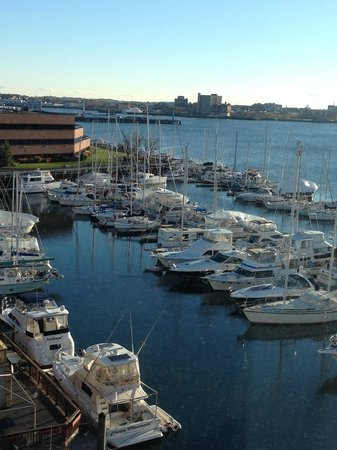 Residence Inn Boston Harbor on Tudor Wharf : Harbour view
