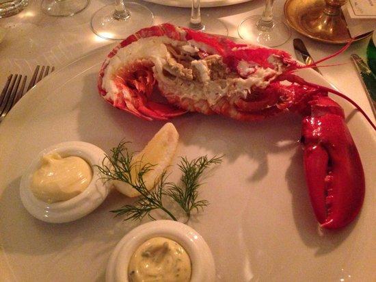 Restaurant Zeleste : Lobster