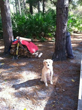 Crooked River State Park : Campsite