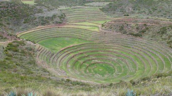 Machu Picchu Viajes Peru: MORAY