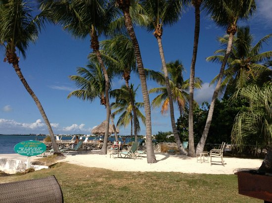 Coconut Bay Resort: Sunbathing area