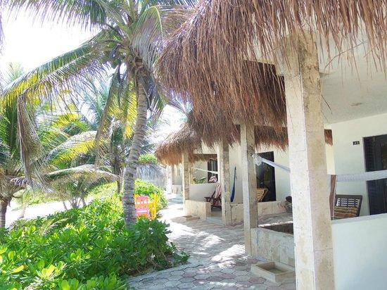 Hotel Cabanas Tulum : Right on the beach - great value!