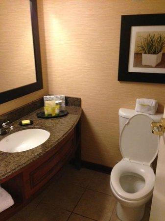 Riverwalk Plaza Hotel & Suites: Bathroom