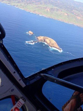 Sunshine Helicopters Maui: Elefant