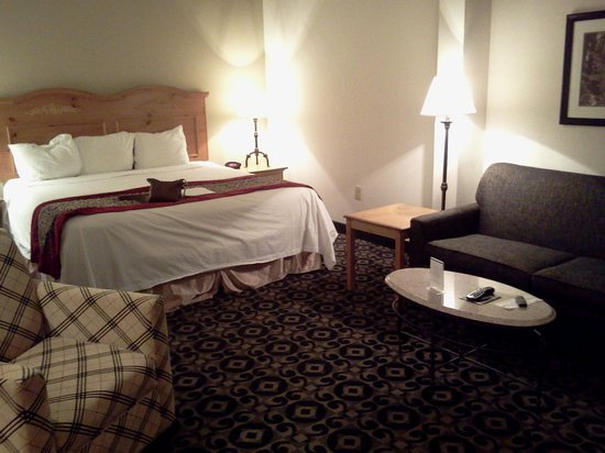 Quality Inn & Suites University : Great bed!!!