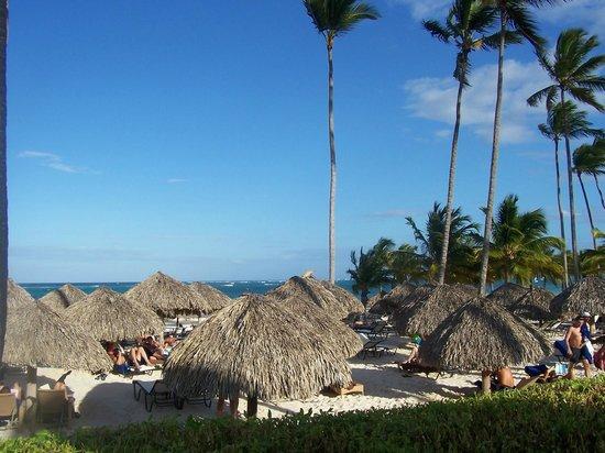 Secrets Royal Beach Punta Cana: Beach view from behind the bar