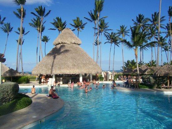 Secrets Royal Beach Punta Cana: Swim up bar