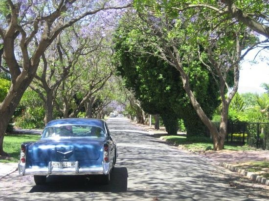 Montagu Country Hotel: Trip with American Dream Car