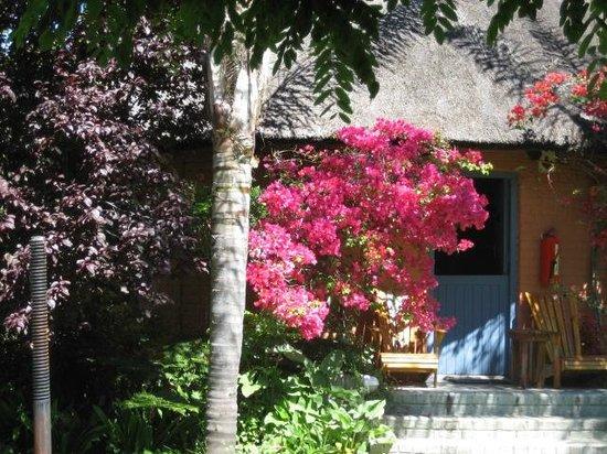 Montagu Country Hotel: Garden
