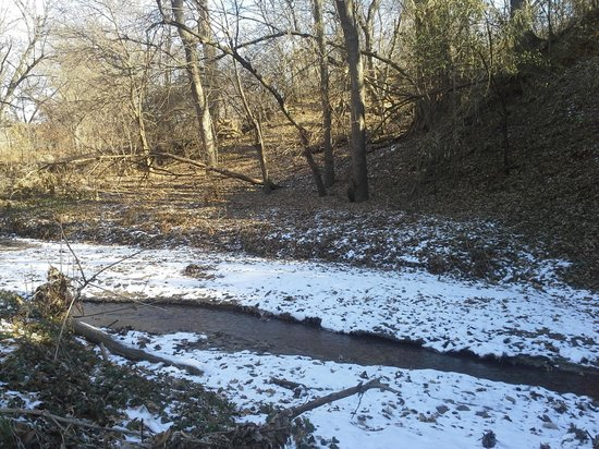 Elmwood Park: the trail