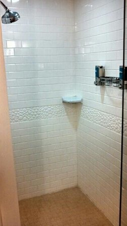 Aloft Nashville West End : Nice, big open shower