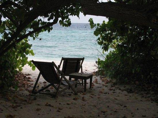 Makunudu Island: Пялж