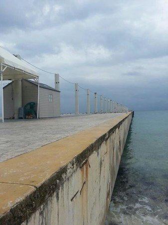 Real Playa del Carmen: Piren vid hotellets strandbar (simma inte under den, de får man inte. Vet av egna erfarenheter ;