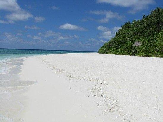 Makunudu Island: Пляж