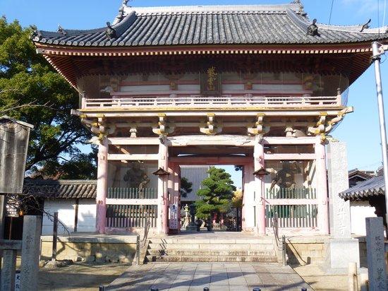 Fujii-dera Kannon Temple: 山門