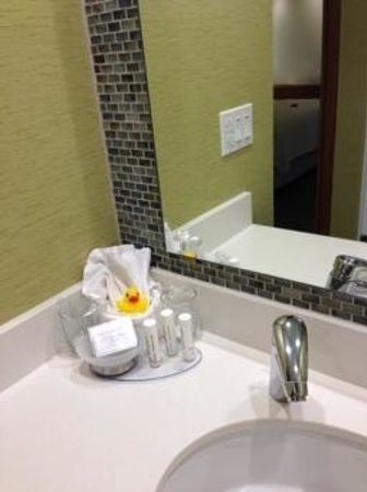 SpringHill Suites Pittsburgh Latrobe: Shower Area