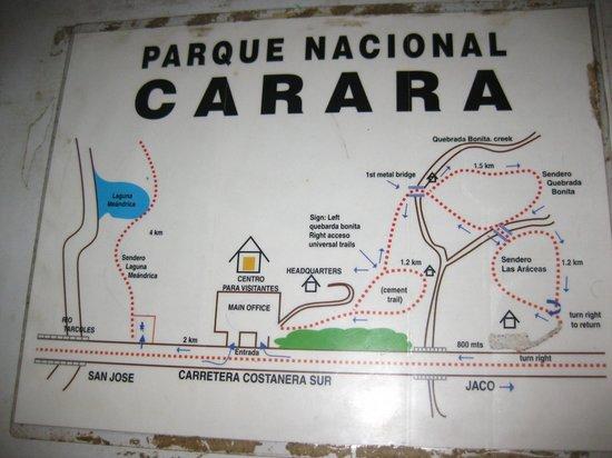 Reserva Biologica Carara: PN Carara