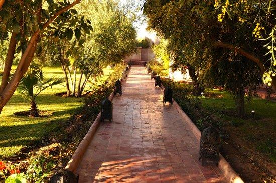 La Maison des Oliviers: Paseo por el jardin.