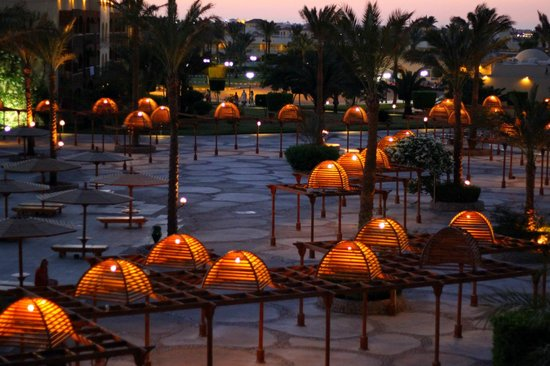 The Desert Rose Resort: вид из номера