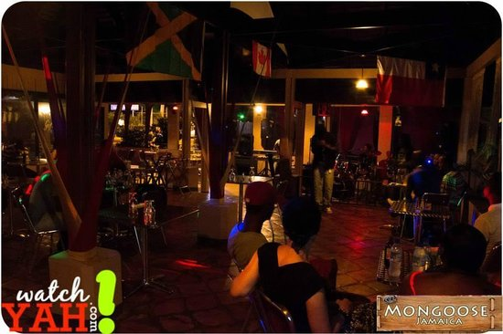 Mongoose Jamaica Restaurant And Lounge Guest Enjoying Our Live Band