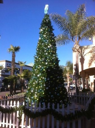 Downtown Huntington Beach: Christmas Tree at Huntington Beach