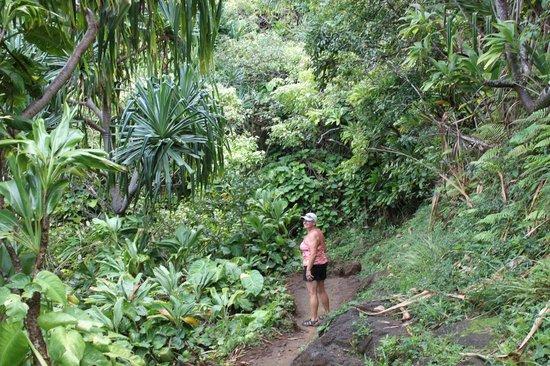 how to train for kalalau trail
