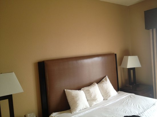 Embassy Suites by Hilton Pittsburgh - International Airport: Lifeless decor