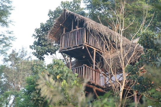 Aranyakam: A 2 tiered balcony is special attraction