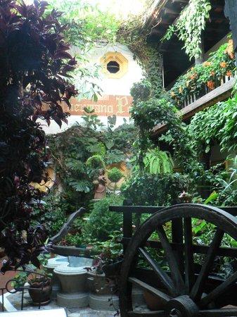 Hotel Posada Del Hermano Pedro : patio