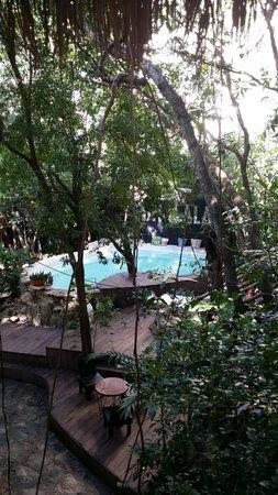 Ecolodge Shalala : La vue de notre chambre