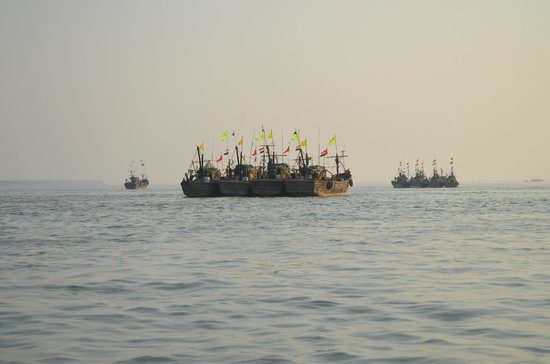 Beyt Dwarka Beach : Fishing boats parked in waters.....