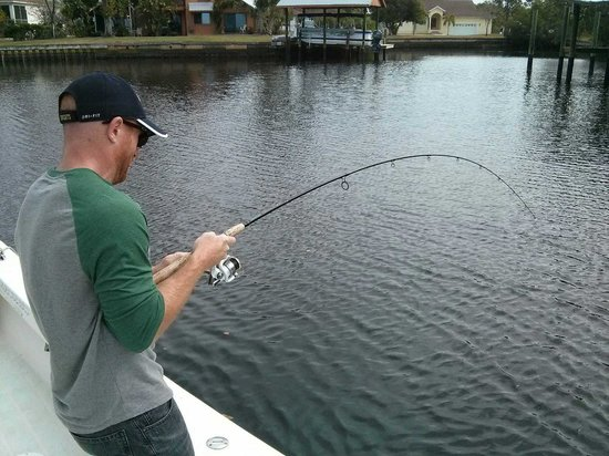 Tampa Fishing Charters: good fight