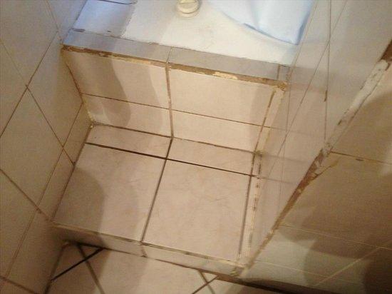 Windsor Hotel: Steps to the 'whirlpool' bath