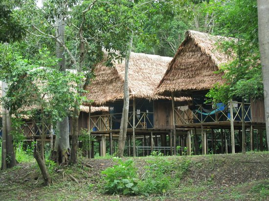 how to stay in amazon jungle lodge in peru