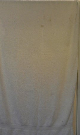 Exe Hotel Cataratas : Uno degli asciugamani del bagno, sporco è dir poco