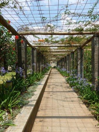 Ufulu Gardens: beautiful grounds