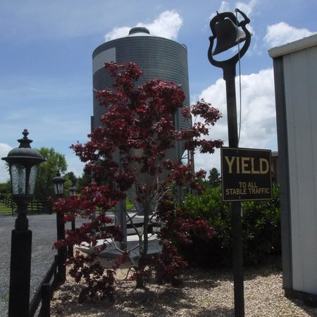 Hermitage Hill Farm and Stables: new silo