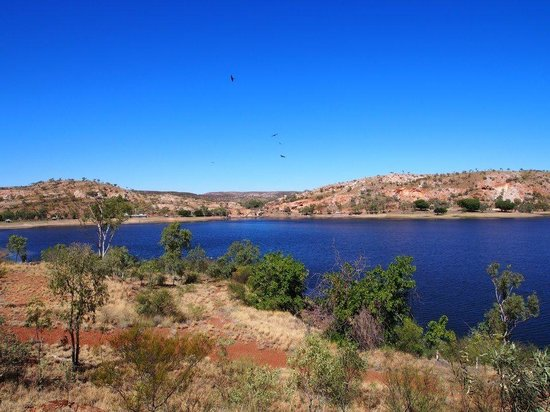 Mount Isa, Avustralya: Eagles flying over the lake