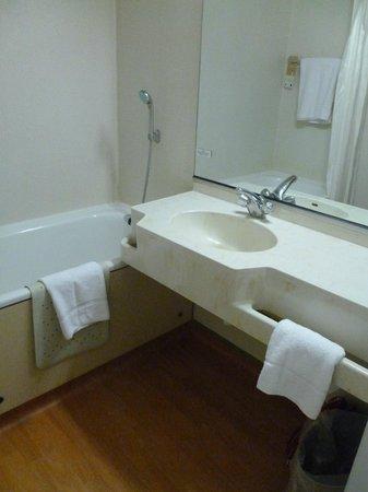 Hotel Novotel Nottingham East Midlands: Bathroom functional and clean