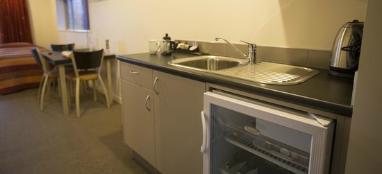 Hot Springs Motor Lodge: Kitchenette
