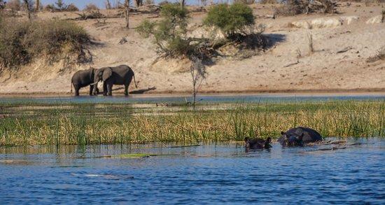 Leroo La Tau: On the River