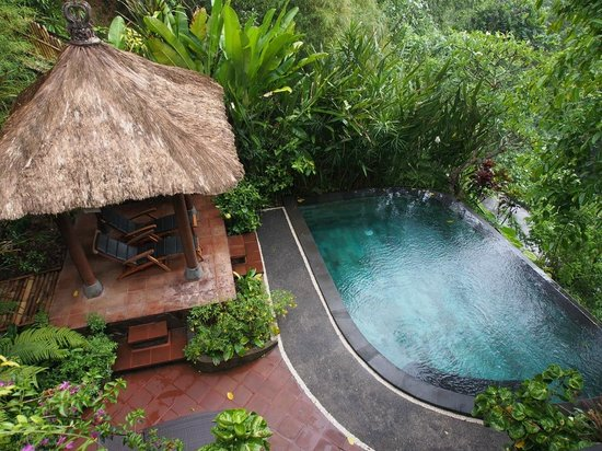 Villa Awang Awang : Your private plunge pool