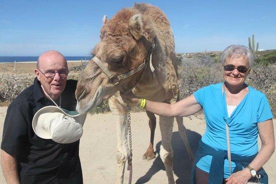 Desert Park Natural Reserve : Me Mum & a ship of the desert
