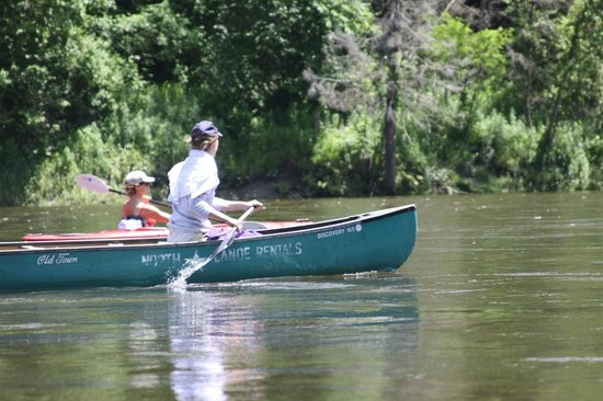 North Star Canoe & Kayak - Day Tours: Connecticut River Cruising