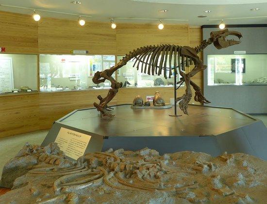 Ogano Fossil Museum