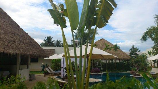Navutu Dreams Resort & Wellness Retreat : 部屋からの眺めです。プールもレストランも部屋から近くて便利です。