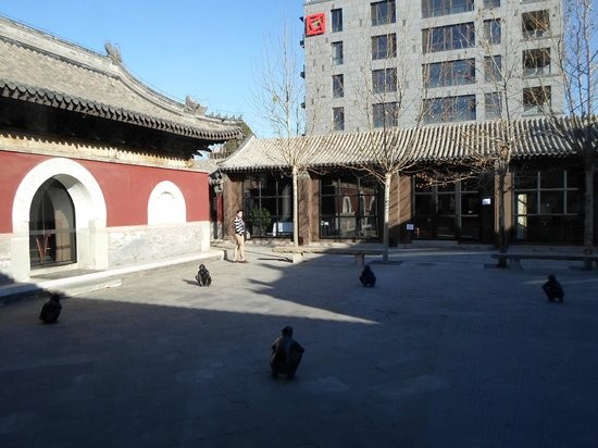 TRB Hutong: View from window table